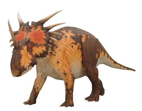 Styracosaurus Pictures & Facts - The Dinosaur Database