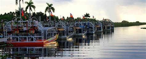 Everglades Holiday Park - Airboat Tour and Alligator