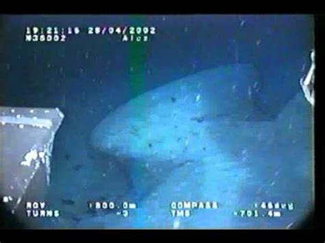 Submarine structures offshore western Cuba 1 - YouTube