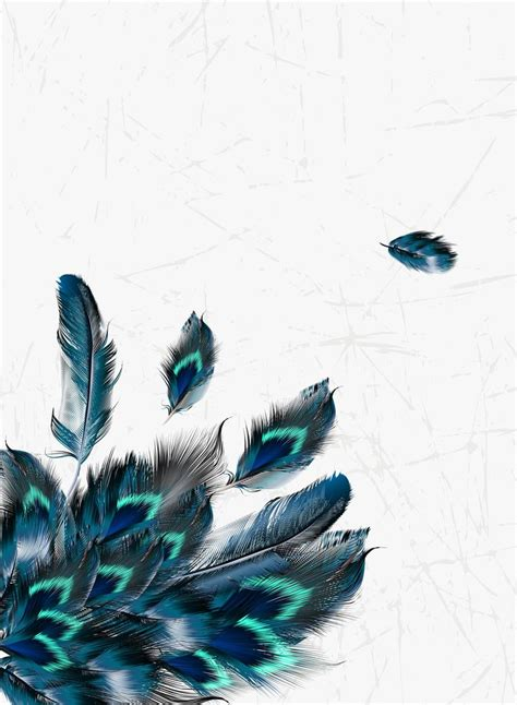 Millions of PNG Images, Backgrounds and Vectors for Free