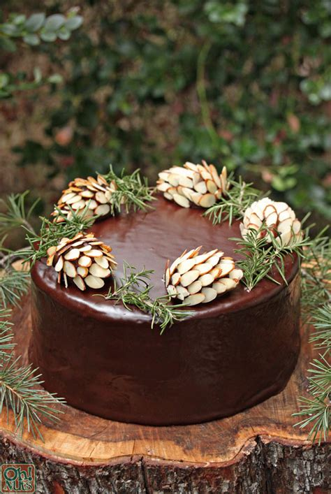How to Make Chocolate Pine Cones | Oh Nuts Blog