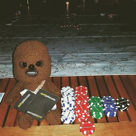 Adventures of X — cleaning up at Texas Holdem' #babychewy