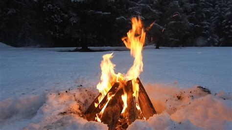 Relaxing Crackling Campfire in a Forest Snow - 3 Hours