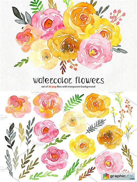 Yellow & pink watercolor flowers » Free Download Vector